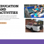 Education and activities